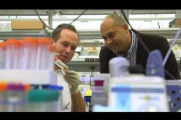 Embedded thumbnail for Jan and Dan Duncan Neurological Research Institute
